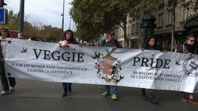 Veggie-pride-528