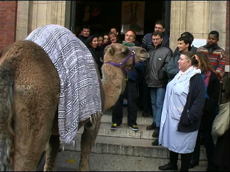 vente aux enchères de crottes de chameau fev03