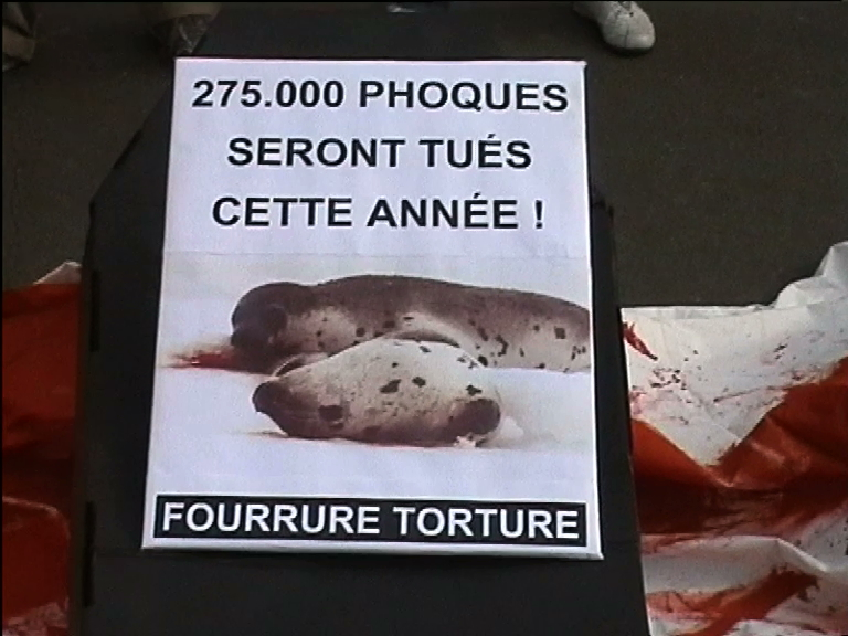 contre-le-massacre-des-phoques-mars08