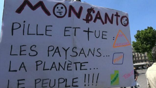 Contre-Monsantos-534