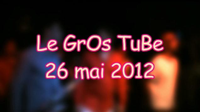 Gros-tube-260512-1654