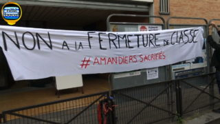Amandiers-sacrifie-404